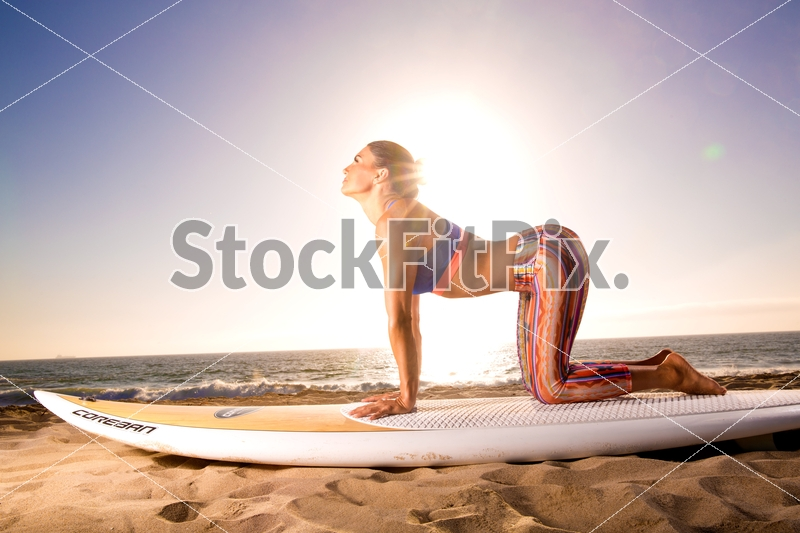 Lauren Abraham;Woman;Female;Brunette;Fitness;Model;Fit;Strong;Healthy;Lifestyle;Beautiful;Pretty;Hot;Sexy;Outdoors;Beach;Sand;Water;Daylight;Sunny;Leggings;Paddleboard;Surfboard;Training;Workout;Working out;Cow pose;Yoga